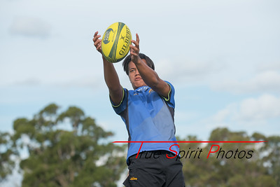 RugbyWA_Junior_Gold_Cup_U15's_Training_Session_18 02 2016-1