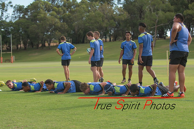 RugbyWA_Junior_Gold_Cup_U15's_Training_Session_18 02 2016-15