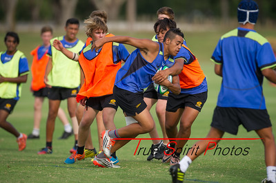 RugbyWA_Junior_Gold_Cup_U15's_Training_Session_18 02 2016-22