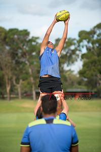 RugbyWA_Junior_Gold_Cup_U15's_Training_Session_18 02 2016-2