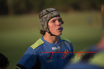 RugbyWA_Junior_Gold_Cup_U17's_Training_Session_18 02 2016-16
