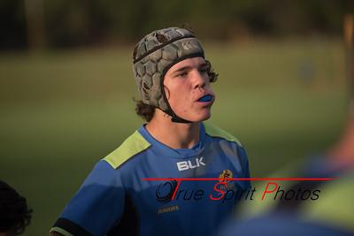 RugbyWA_Junior_Gold_Cup_U17's_Training_Session_18 02 2016-16