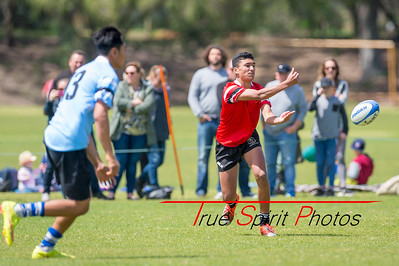 RugbyWA_State_Championships_North_vs_South_02 10 2016-16