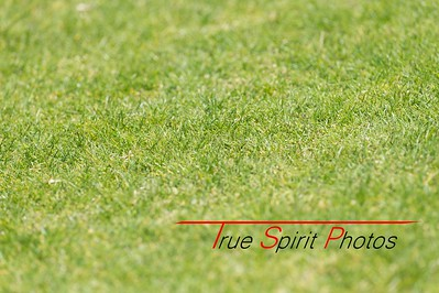 RugbyWA_State_Championships_North_vs_South_02 10 2016-13