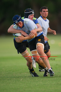 RugbyWA_Junior_Gold_Cup_U17's_vs_U20's_Training_Game_18 02 2016-10