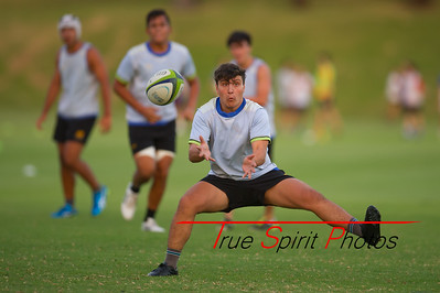 RugbyWA_Junior_Gold_Cup_U17's_vs_U20's_Training_Game_18 02 2016-18