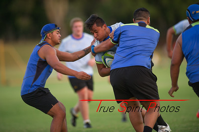RugbyWA_Junior_Gold_Cup_U17's_vs_U20's_Training_Game_18 02 2016-25