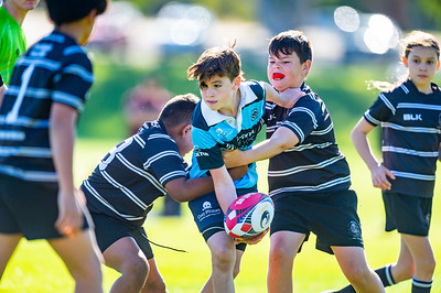2020_RugbyWA_Junior_GRand_Finals_17 10 2020-20