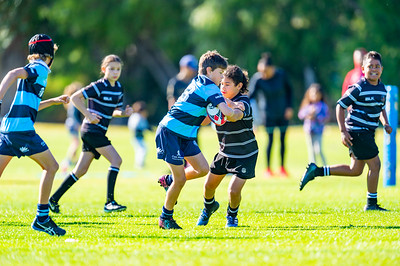 2020_RugbyWA_Junior_GRand_Finals_17 10 2020-11