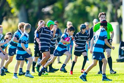 2020_RugbyWA_Junior_GRand_Finals_17 10 2020-10