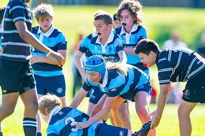 2020_RugbyWA_Junior_GRand_Finals_17 10 2020-16