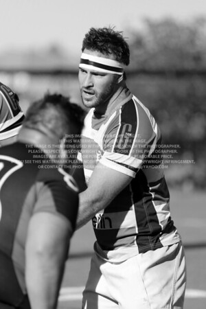 Tim Miller F68A3656 TP-2013-05-13 Men's Rugby Denver Barbarians BW