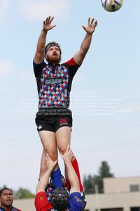 F68A0631 TP-2013-12-10 D2 Rugby Denver Harlequins