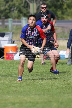 F68A0577 TP-2013-12-10 D2 Rugby Denver Harlequins