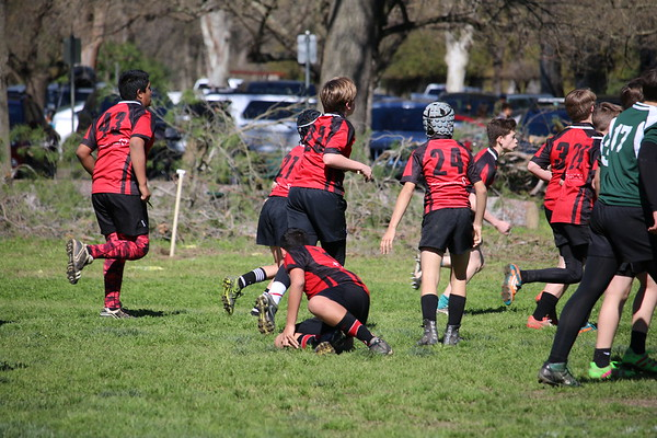Motley Rugby 2-26-2017