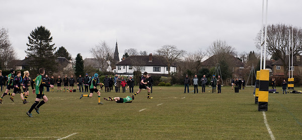 Old Cats v Effingham & Leatherhead