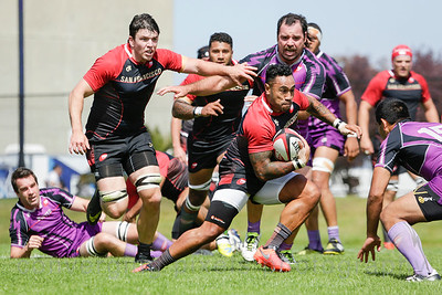 Professional Rugby between San Francisco and Denver. Professional Rugby between San Francisco and Denver