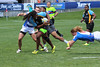 H1641266 2014 Serevi Rugbytown Seven's Glendale Raptors vs Bahamas