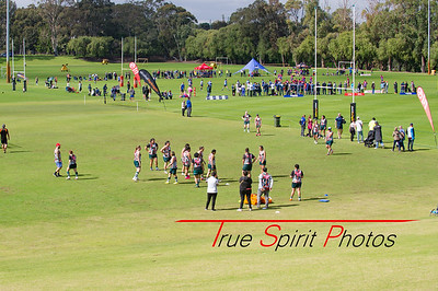 Womens_Grand_Final_Cottesloe_vs_Wanneroo_20 08 2016 -19