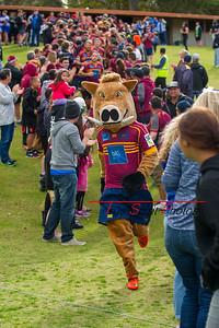 Pindan_Premier_Grade_Grand_Final_Wests_Scarborough_vs_Nedlands_21 08 2016-6