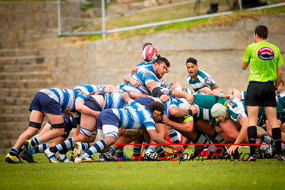 Fortescue_Premier_Grade_Rugby_Cottesloe_vs_Wanneroo_29 06 2019-6