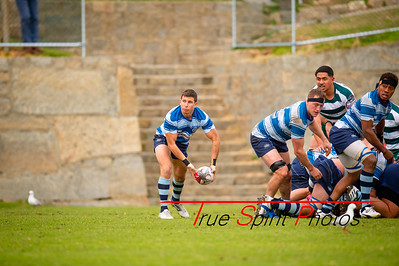 Fortescue_Premier_Grade_Rugby_Cottesloe_vs_Wanneroo_29 06 2019-7