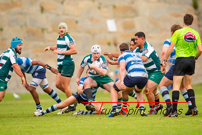Fortescue_Premier_Grade_Rugby_Cottesloe_vs_Wanneroo_29 06 2019-4