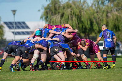 Grand_Final_FMG_3rd_Grade_Div2_Wests_Scarbourough_vs_Coastal_Cavaliers_24 08 2019-9