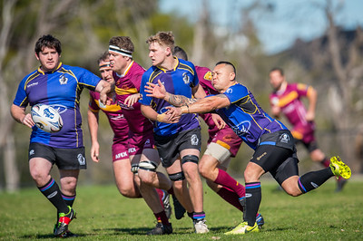 Grand_Final_FMG_3rd_Grade_Div2_Wests_Scarbourough_vs_Coastal_Cavaliers_24 08 2019-15
