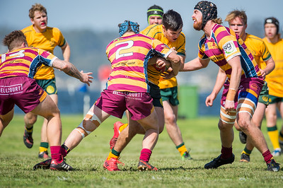 Semi_Final_Belt_up_Colts_Comp_Wests_Scarborough_vs_Associates_17 08 2019-19