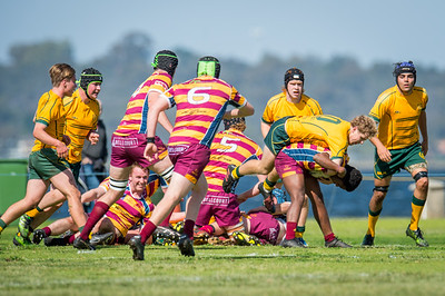 Semi_Final_Belt_up_Colts_Comp_Wests_Scarborough_vs_Associates_17 08 2019-18