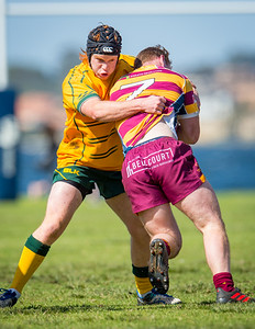 Semi_Final_Belt_up_Colts_Comp_Wests_Scarborough_vs_Associates_17 08 2019-17