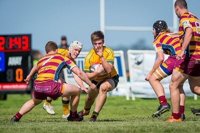 Semi_Final_Belt_up_Colts_Comp_Wests_Scarborough_vs_Associates_17 08 2019-21