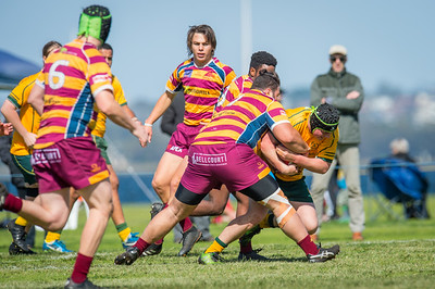 Semi_Final_Belt_up_Colts_Comp_Wests_Scarborough_vs_Associates_17 08 2019-20