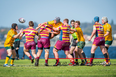 Semi_Final_Belt_up_Colts_Comp_Wests_Scarborough_vs_Associates_17 08 2019-14
