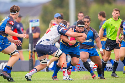 Western_Force_vs_Eastwood_Rugby_Club_22 02 2020-15