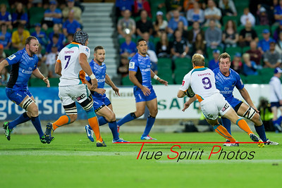 Emirates_Western_Force_vs_Cheetahs_23 03 2013_013