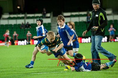 SupeRugby_Emirates_Western_Force_vs_Sharks_17 05 2013_009