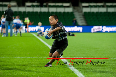 SupeRugby_Emirates_Western_Force_vs_Sharks_17 05 2013_017