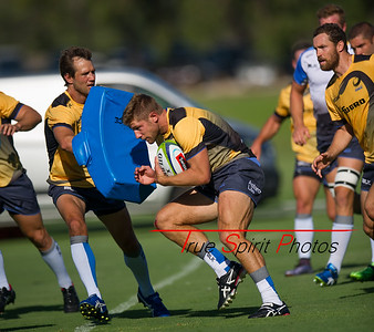 Western_Force_vs_Asia_Pacific_Dragons_13 02 2016-7