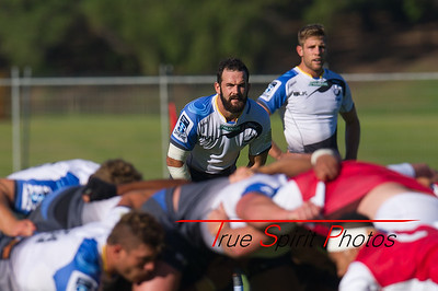 Western_Force_vs_Asia_Pacific_Dragons_13 02 2016-13