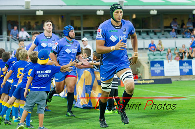 SupeRugby_Western_Force_vs_Reds_02 03 2017-8