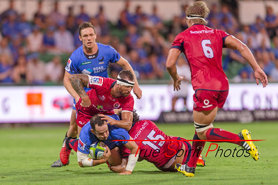 SupeRugby_Western_Force_vs_Reds_02 03 2017-18