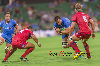 SupeRugby_Western_Force_vs_Reds_02 03 2017-16