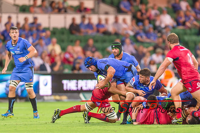 SupeRugby_Western_Force_vs_Reds_02 03 2017-20