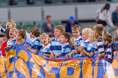 Super_Rugby_Western_Force_vs_Lions_29 04 2017-7