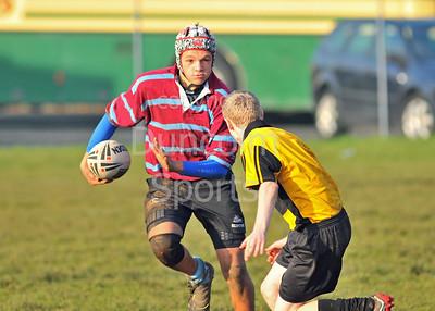 At Giffnock - November 2011