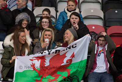 Welsh Ladies Supporters