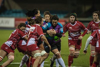 Cardiff Arms Park, January 4th 2015