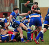 14 March 2015 at Braidholm, Glasgow. BT National League Division 1 match, GHA RFC v Jed-Forest RFC<br /> <br /> photographer - Duncan Gray
